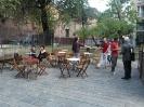 Pincherle social garden 2014_3
